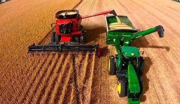 El Gobierno apunta a los dólares de la cosecha gruesa, ¿será tan buena como espera?