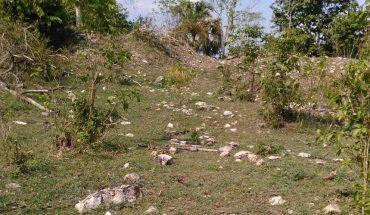 Hallan más de 2 mil vestigios en el trazo del Tren Maya en Campeche