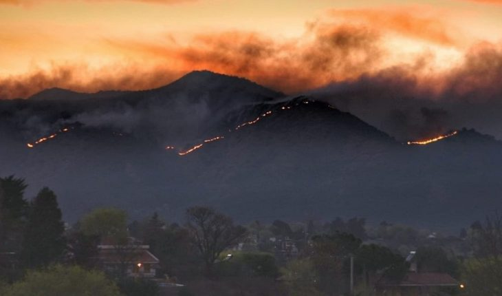 Incendios: Máximo Kirchner presentó un proyecto para proteger el ecosistema