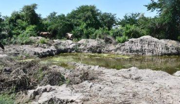 Localizan extracciones ilegales en Módulo Petatlán, Guasave