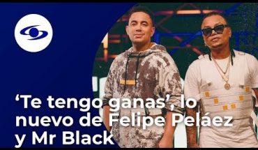 Felipe Peláez presenta 'Te tengo ganas', su nuevo sencillo junto a Mr. Black – Caracol TV