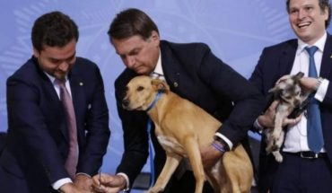 Brazil: Bolsonaro enacted a law against Animal Abuse and signed his dog