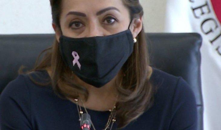 Josefina Vazquez Mota proposes putting labels on war toys
