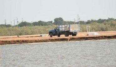 Destaca México como potencia en el sector acuícola