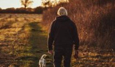 Día mundial de una salud: un trabajo permanente en la salud humana, animal y ambiental