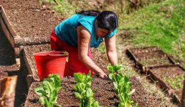 Mujeres siembran hortalizas, pero también su libertad y rompen estereotipos