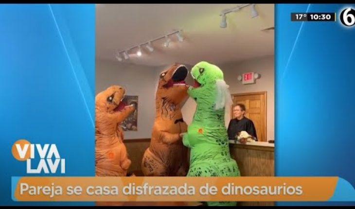 Pareja se casa disfrazada de dinosaurios | Vivalavi