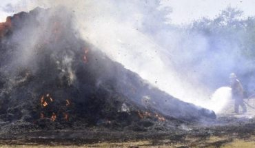 Flames consume pasture on a site located in Angostura