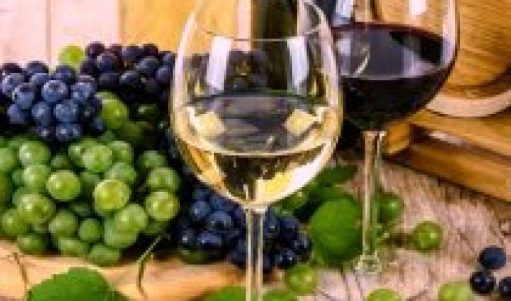 New harvests and launches refresh the wine and foaming market