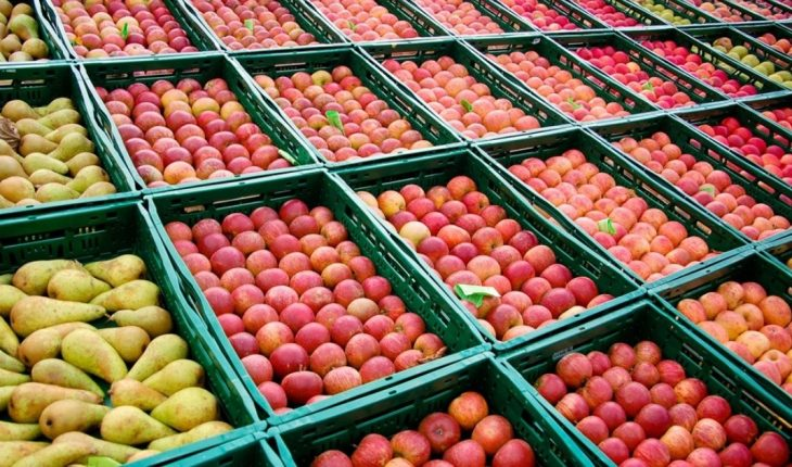 They detect ups in fruit prices of between 77% and 187% in the last year