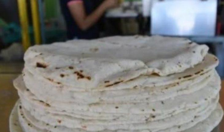 Warns Cofece fines to those who raise tortilla price