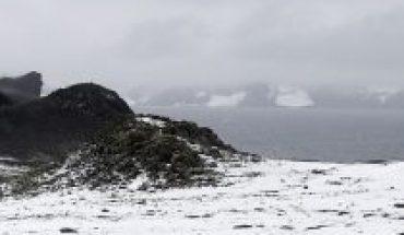 Chile da la vuelta al mundo por llevar el Covid-19 a la Antártida
