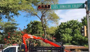 Vialidad y Transportes mejora semáforos en Guasave, Sinaloa