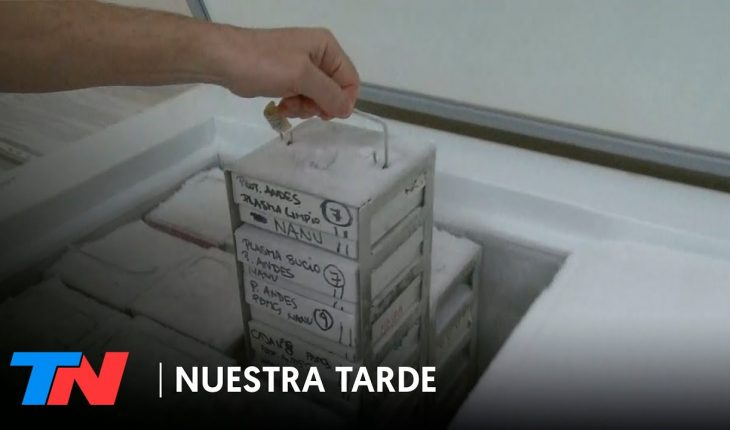 Así son los freezers especiales donde se podrían almacenar las vacunas contra el coronavirus