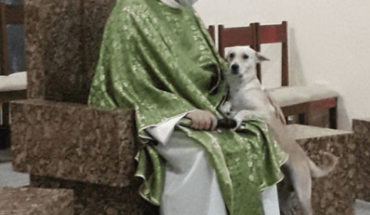 Brazilian priest goes viral for his love of dogs