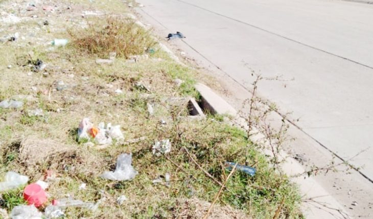 Neighbors of Los Tulipanes, Los Mochis, call for land cleanup