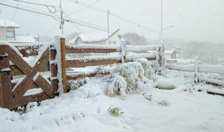 Videos and images of spring snowfall in Ushuaia