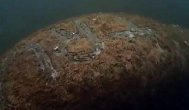 [VIDEO] EE.UU.: Policía busca a fanático que inscribió el apellido de Trump en la piel de un manatí