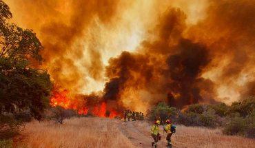 Onemi señaló que mantendrá la Alerta Roja por incendio forestal en Curacaví hasta que la emergencia este controlada