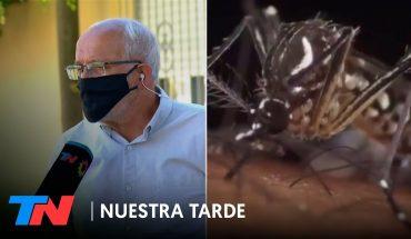 Vuelve la preocupación por el dengue: ¿Estamos ante una nueva epidemia en el país?