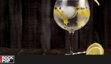 ¡Para este fin de semana! ¿Cómo hacer los mejores tres tragos con gin? — Rock&Pop