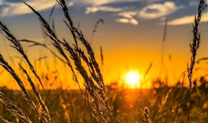 ¿Qué significado tienen los sueños donde aparece el sol?