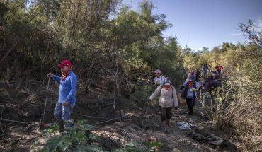 La búsqueda de desaparecidos en México no la detiene ni el COVID-19