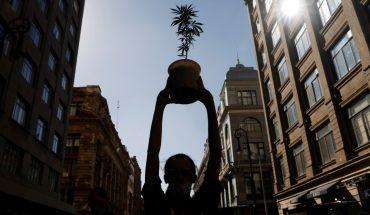México aprobó el uso de la marihuana recreativa