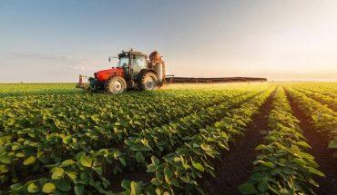 Los exportadores de productos agrícolas deberán liquidar tributos de forma automática