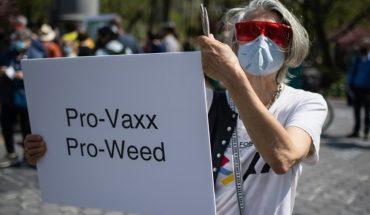Nueva York: Regalan marihuana a todos los que se vacunan contra el COVID-19