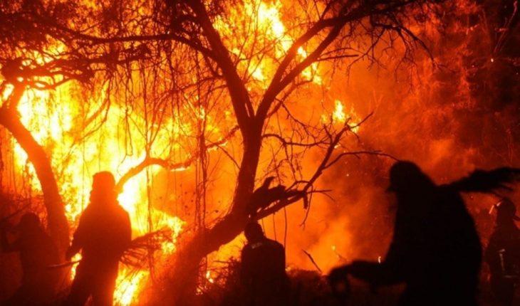 CDMX. Falls incendiary, caused grassland accident