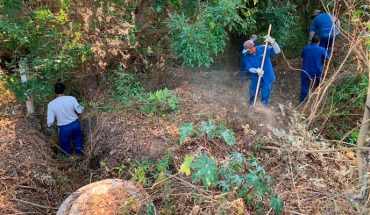 Morelia government held the eighth day of clean-up