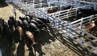 Arrancó el paro del campo en rechazo a la suspensión de las exportaciones de carne