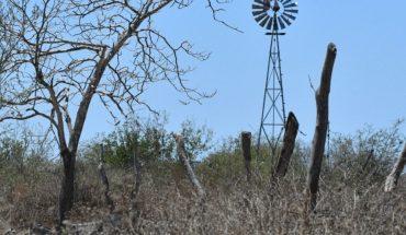 Se agrava la crisis en la zona rural de Mazatlán por sequía