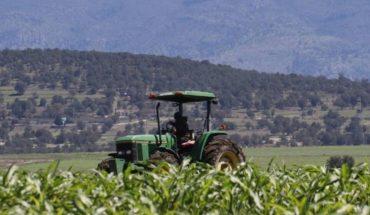Judge denies ANC eliminate glyphosate bans