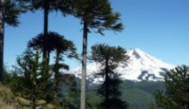 New edges of the conflict in La Araucanía: Temuco and the desired Mapuche soil