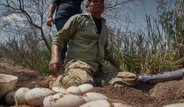 Beto Caimán siente más paz con cocodrilos que con los humanos