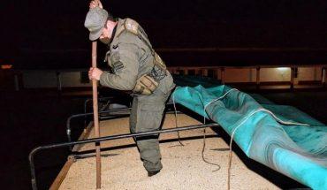 Gendarmería decomisó 210 toneladas de soja que eran trasladadas de contrabando