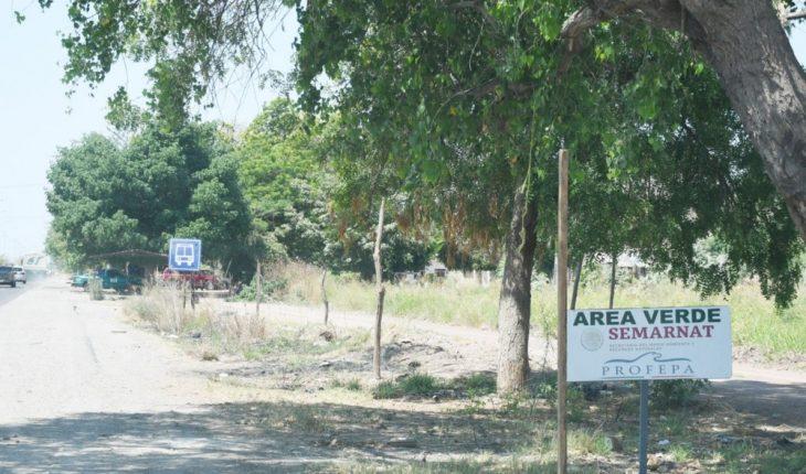 Invaden terrenos paralelos a carretera Los Mochis-San Blas