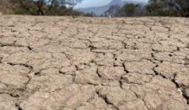 La innovación es vital para enfrentar la sequía