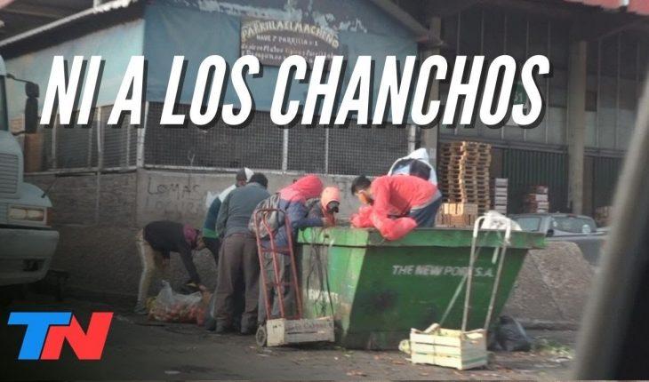 ESCÁNDALO EN EL MERCADO CENTRAL: los alimentos que donan SALEN DE LA BASURA