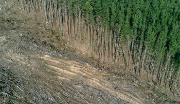 Argentina enters environmental default: what does it mean?