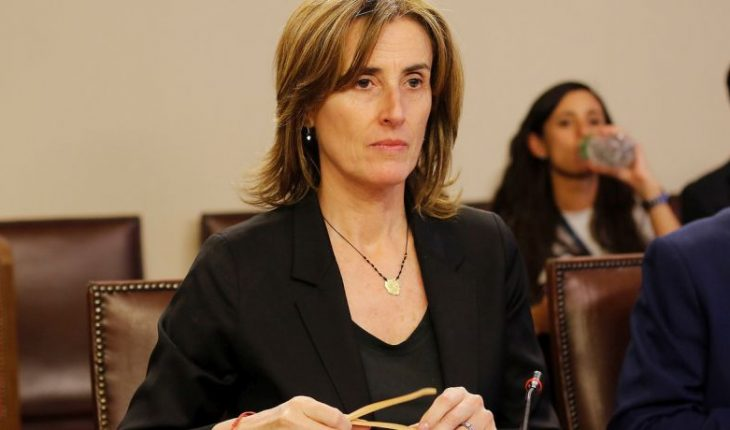 """Cubillos interpeló a Elisa Loncón: """"Usted habló de amor y en la noche sembró división"""""""