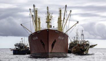 Flotas chinas se aproximan a Galápagos: organizaciones exigen mayor firmeza