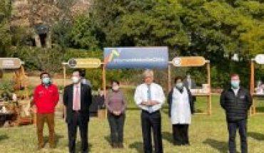 """Presidente Piñera aborda el caso Carahue y cataloga los hechos de violencia en La Araucanía como """"graves actos de terrorismo"""""""