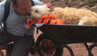 Puppy with cancer is taken in a wheelbarrow to his favorite mountain