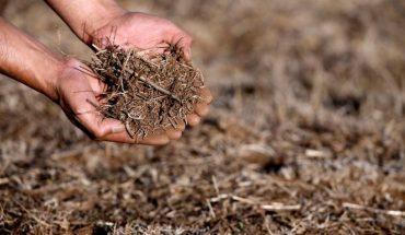 Presidente Piñera declaró emergencia agrícola en la RM