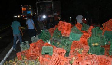 Vuelca camión cargado con mango en Ahome