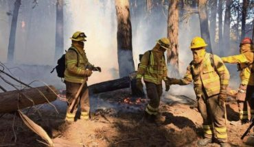 Wildfires soar in a year that is expected to be critical due to drought and high temperatures