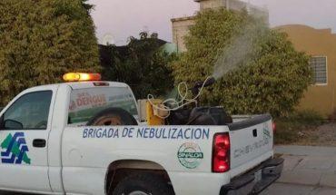 Hay 40 casos sospechosos de dengue en zona norte de Sinaloa